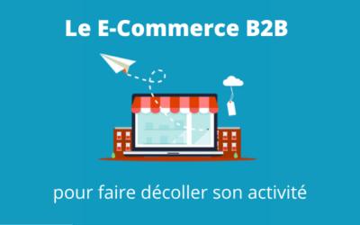 Pourquoi et comment créer son site E-Commerce B2B ?