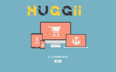 Quel est l'avantage de créer un site e-commerce dédié aux professionnels ?