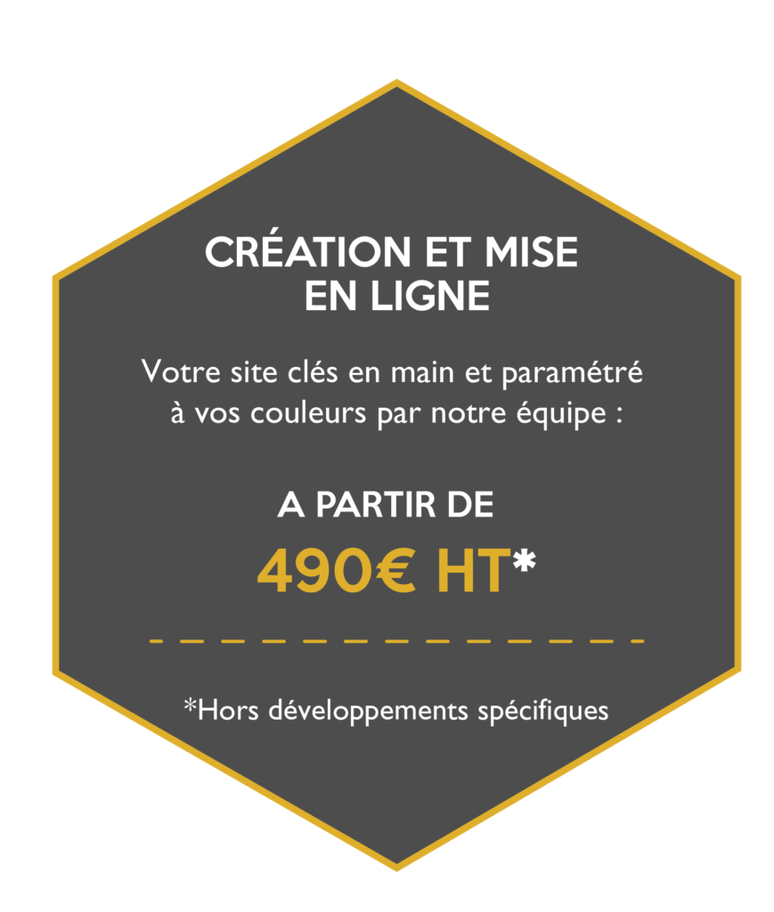 Création et mise en ligne de votre site à partir de 490€